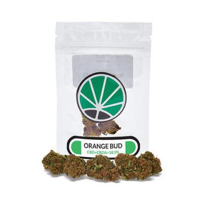 bud-orange-plante-du-marijuana-cbd-fleur