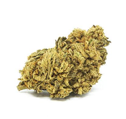 White Widow Fleur de Cannabis