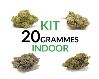 Kit 20 Grammes Indoor justbob.fr