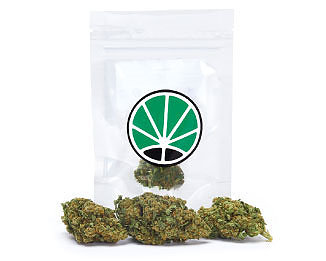 lemon-cheese-weed-fleur-de-cbd-marijuana-cannabis-sativa