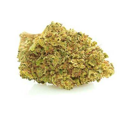 mango haze fleur de cannabis