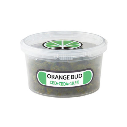orange-skunk-cbd-fleur-plante-du-cannabis