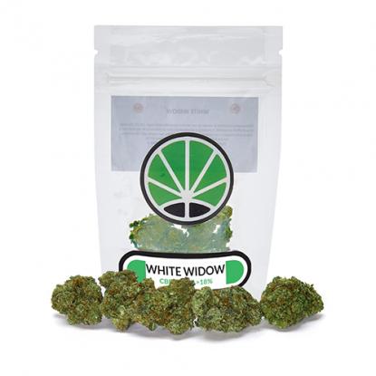 white-widow-fleur-de-cbd-marijuana