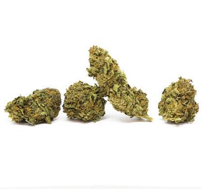 Sweet Berry Fleur Cannabis CBD
