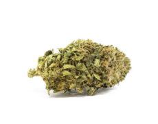 Sweet Berry Cannabis