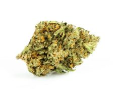 Cannabis Legal Sweet Berry
