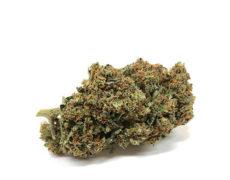 sweet-berry-marijuana-cbd-fleur-de-cbd-cannabis