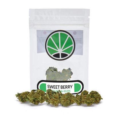 sweetberry-cannabis-sativa