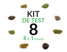fleur-de-cbd-cannabis-marijuana-8-gramme-thc