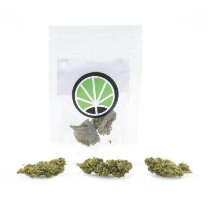 melon-kush-marijuana-cbd-thc-cannabis