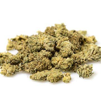 fleurs de cannabis légal Bubblegum