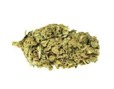 Bubblegum Fleur Cannabis