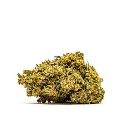 gorilla-glue-cbd-fleur-de-cannabis-france