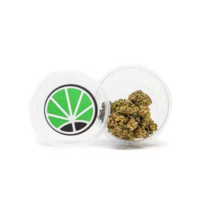 gorilla-glue-fleur-de-cbd-marijuana-france-cannabis-sativa