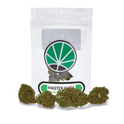 master-kush-plante-de-marijuana