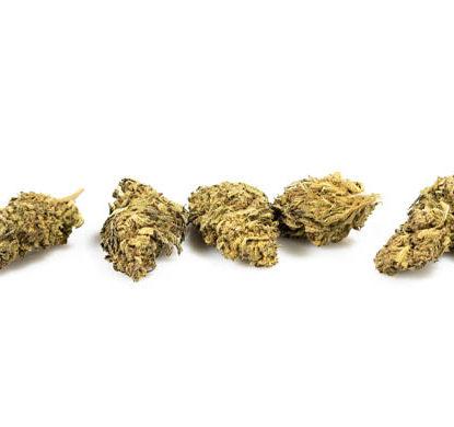Fleurs Cannabis CBD DO SI DOS - JustBob!