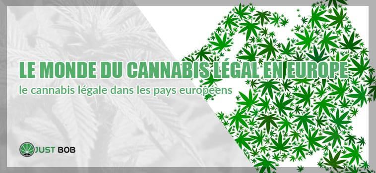 Le monde du cannabis CBD en Europe