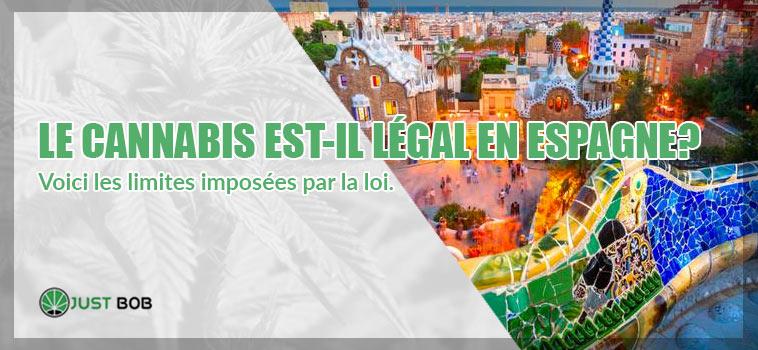 CANNABIS LÉGAL EN ESPAGNE