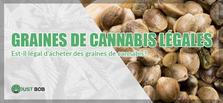 GRAINES DE CANNABIS LÉGALES
