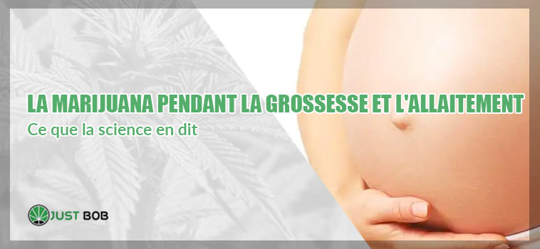 La marijuana pendant la grossesse et l'allaitement