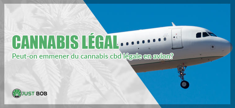 cannabis cbd en avion
