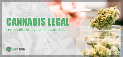 Le cannabis CBD a connu un grand succès dans notre pays. C'est un véritable phénomène, à tel point que des magasins spécifiques sont apparus un peu partout
