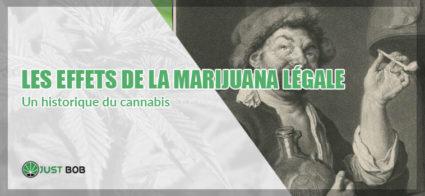 Cannabis CBD: les effets de la marijuana légale