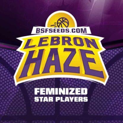 lebron-haze-femminisees