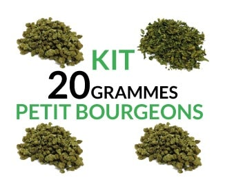 Kit 20 Grammes Small Buds justbob.fr