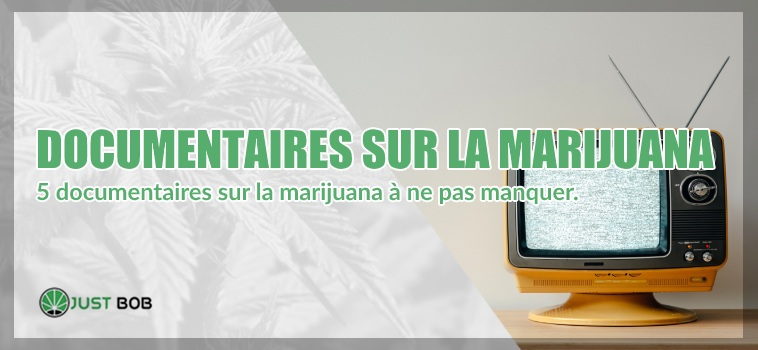 Documentaires sur la marijuana