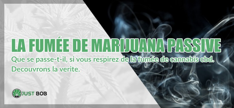 passive fumée de cannabis cbd