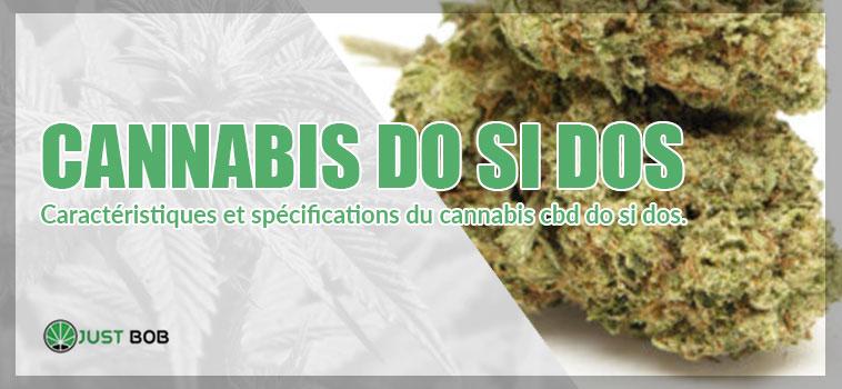 cannabis do si dos