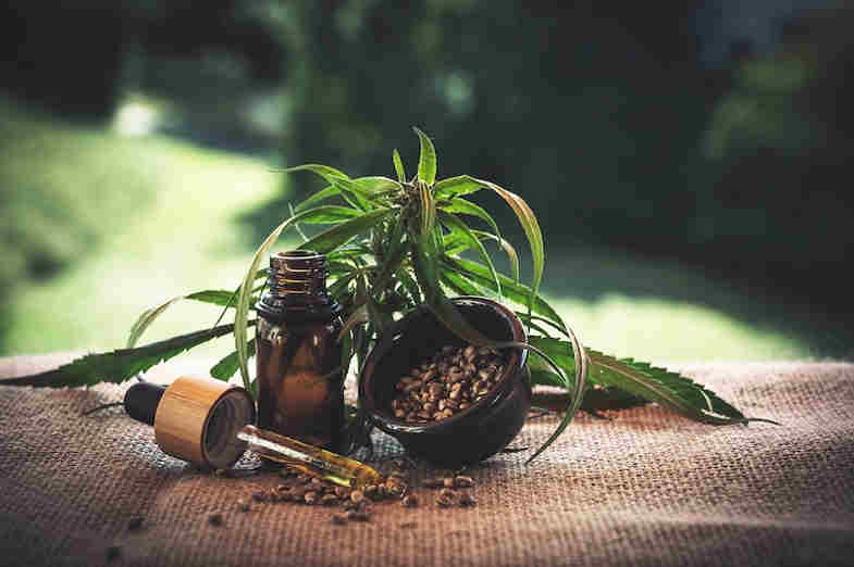 huile cbd cannabis