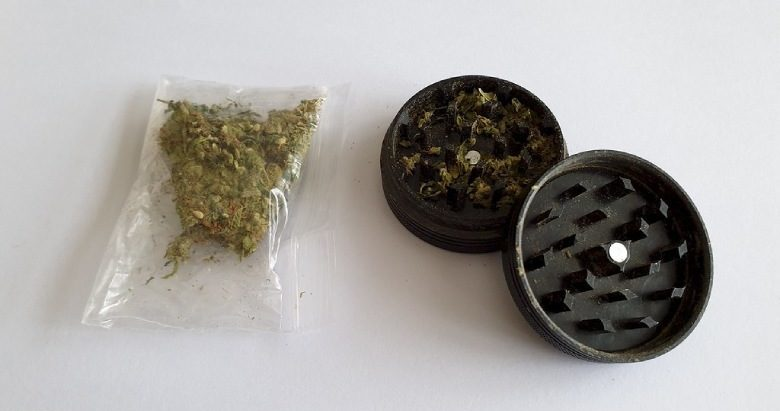 inflorescences cannabis grinder