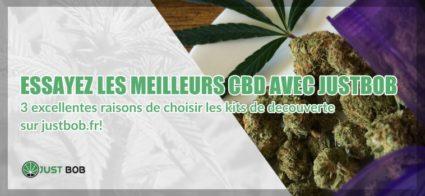 cbd et qualitè de cannabis