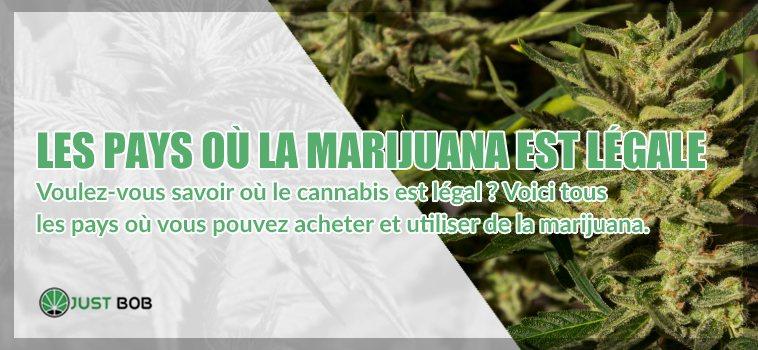 les pays où la marijuana cbd est légale
