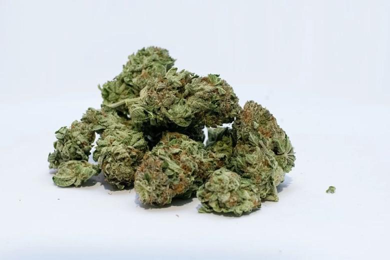 Beurre de cannabis cbd