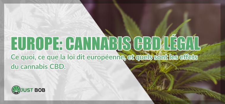 Cannabis légal en europe