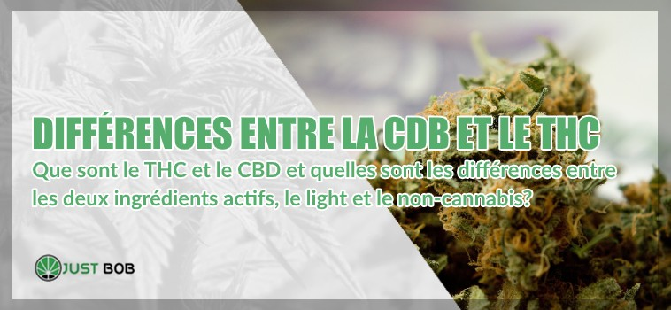 Difference entre la CBD et le THC