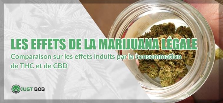 effets de la marijuana légale