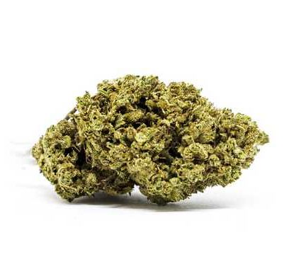 master kush fleur de cannabis cbd