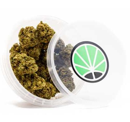 emballage de Master Kush cannabis sans thc