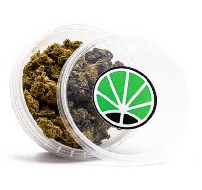 pot de marijuana légal Melon Kush