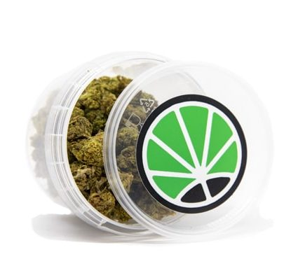 emballage de Bubblegum cannabis sans thc