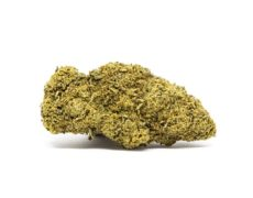 gorilla glue fleur de cannabis