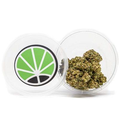pot de marijuana légal gorilla glue