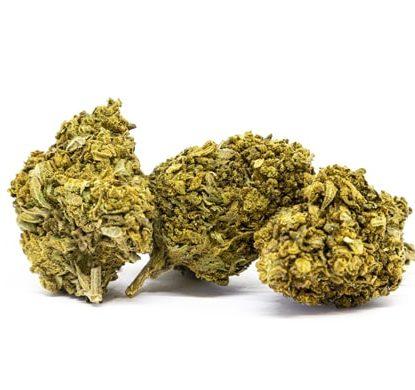 lemon cheese fleur cannabis sativa