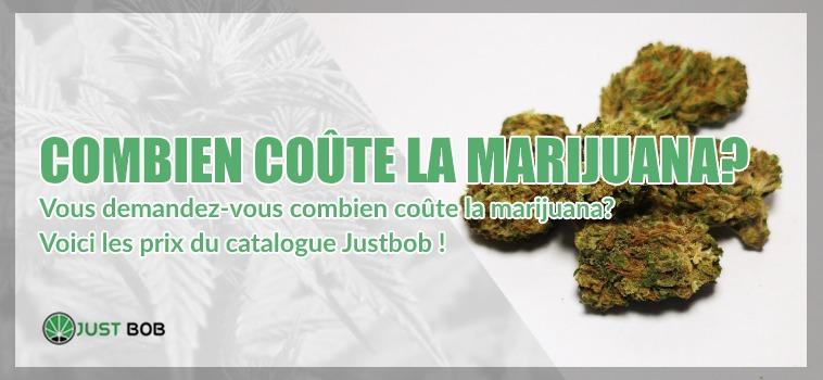 Combien coûte la marijuana cbd