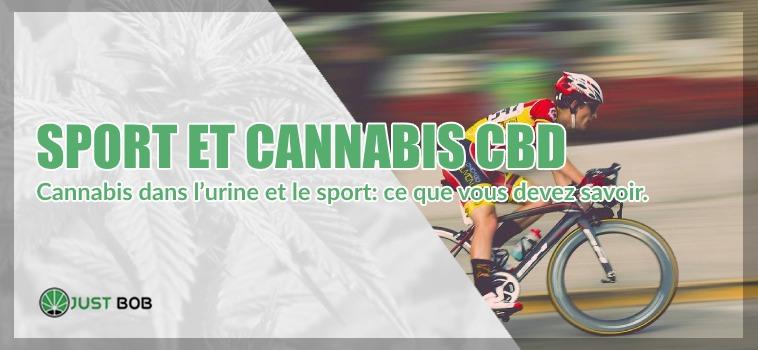 Sport et Cannabis CBD dans urine