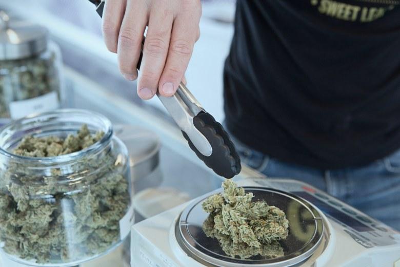 pots scellés de cannabis cbd